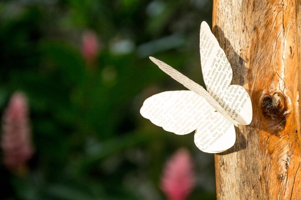 Poeme et papillon