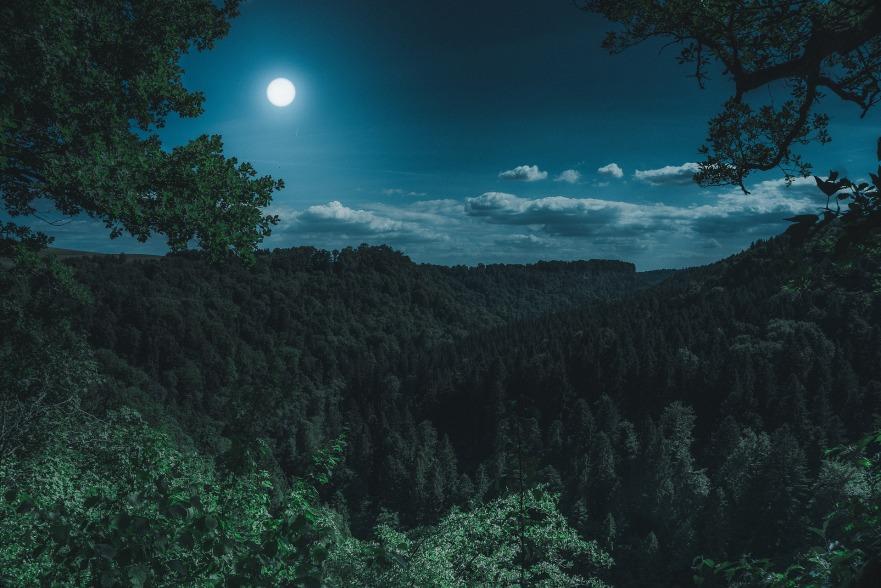 lune et paysage de nuit